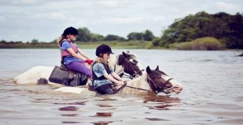 sejour-immersion-famille-chevaux-irlande-junior-1-min
